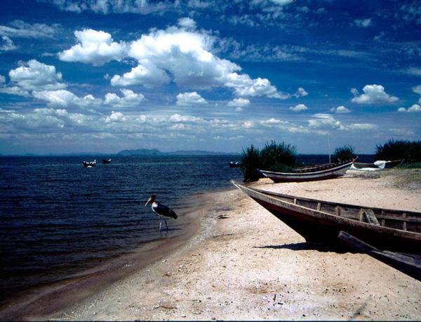 Tanzania: Lake Victoria